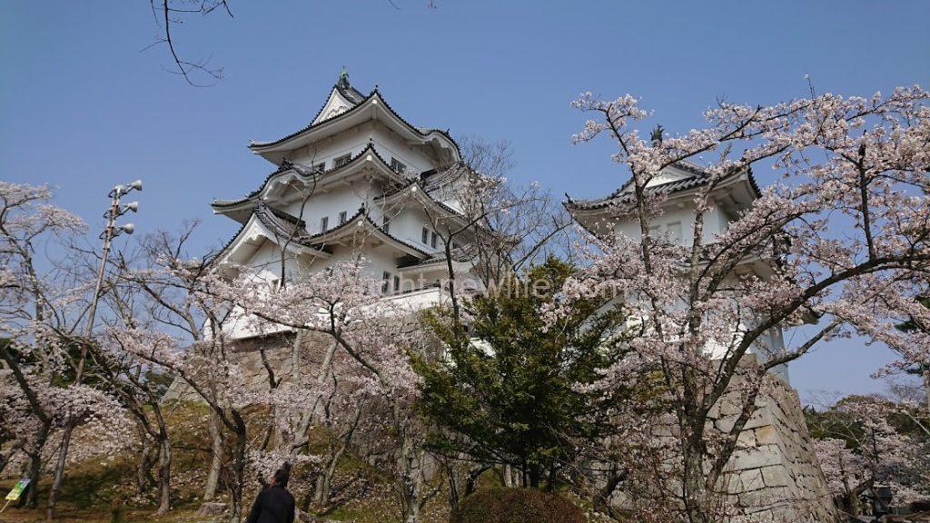 伊賀上野城周辺の駐車場を紹介!無料の場所や地元民の裏技を解説!